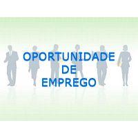 Promotores de artigos low cost - Porto